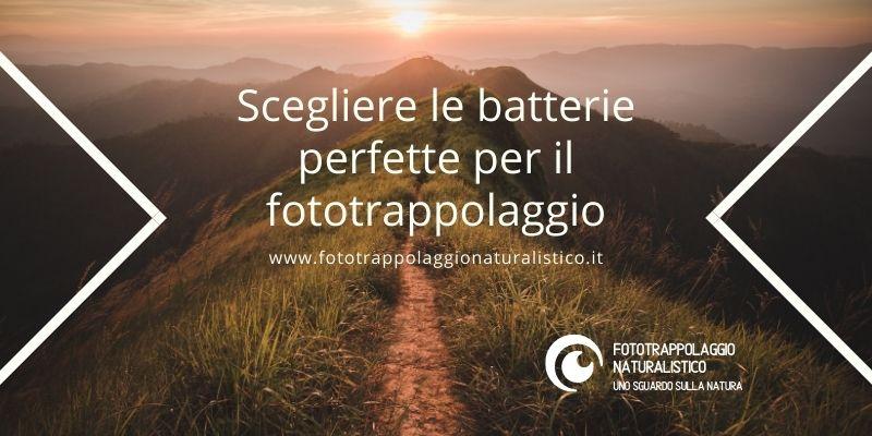 Scegliere le batterie perfette per il fototrappolaggio