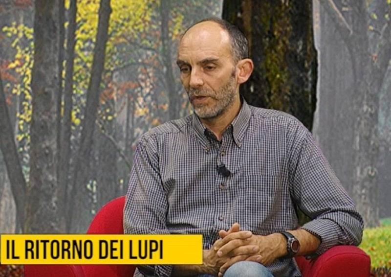 Intervista a Duccio Berzi sul fototrappolaggio naturalistico