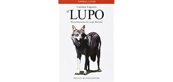 """Recensione libro """"il lupo"""" di Carmine Esposito"""