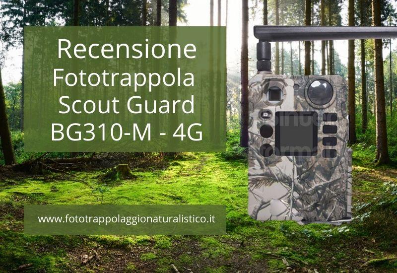Recensione Fototrappola Scout Guard BG310-M - 4G - 18Mp