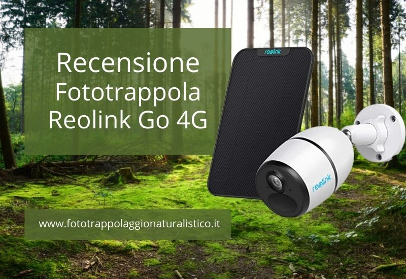 Recensione Telecamera Reolink Go 4G